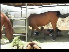 farmers daughter gets fucked by the stable boy -