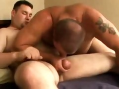 bear bonks his boyfriend