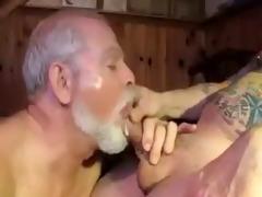 polarbear dad sucks &; licks balls &;
